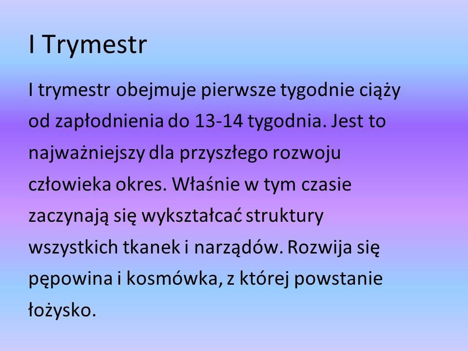 I Trymestr I trymestr obejmuje pierwsze tygodnie ciąży