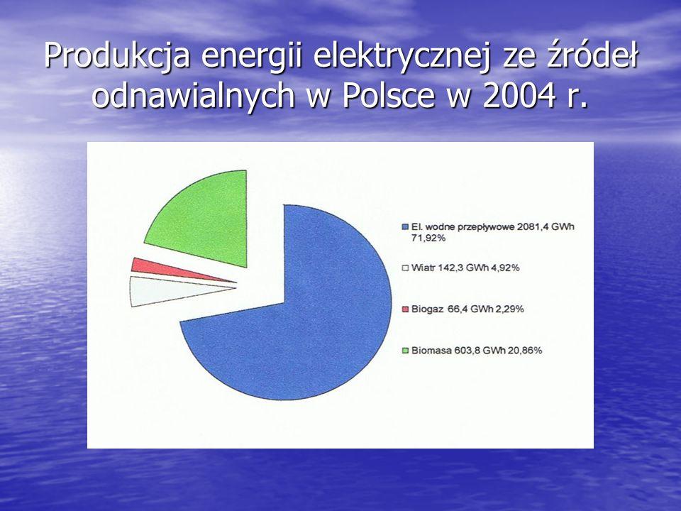 Produkcja energii elektrycznej ze źródeł odnawialnych w Polsce w 2004 r.