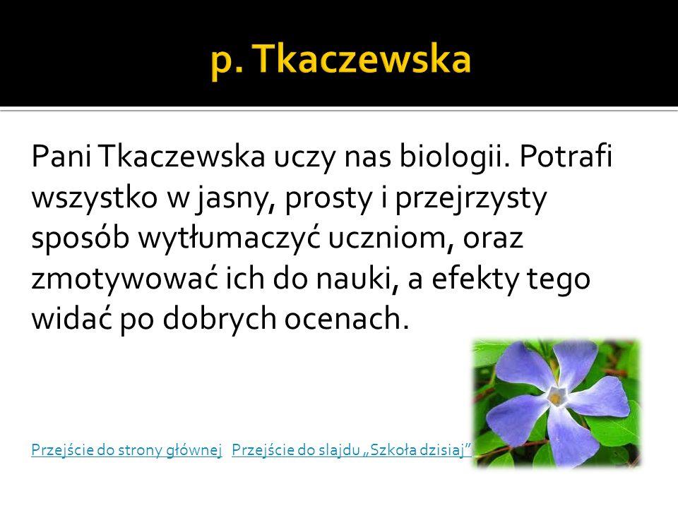 p. Tkaczewska
