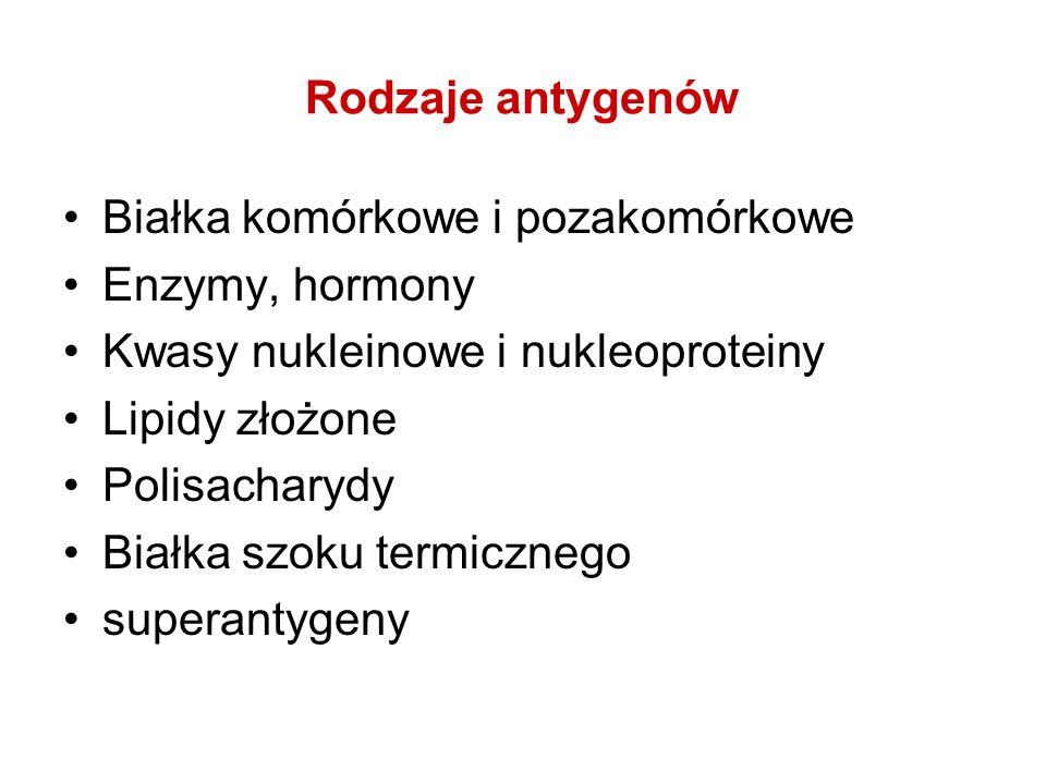 Rodzaje antygenówBiałka komórkowe i pozakomórkowe. Enzymy, hormony. Kwasy nukleinowe i nukleoproteiny.