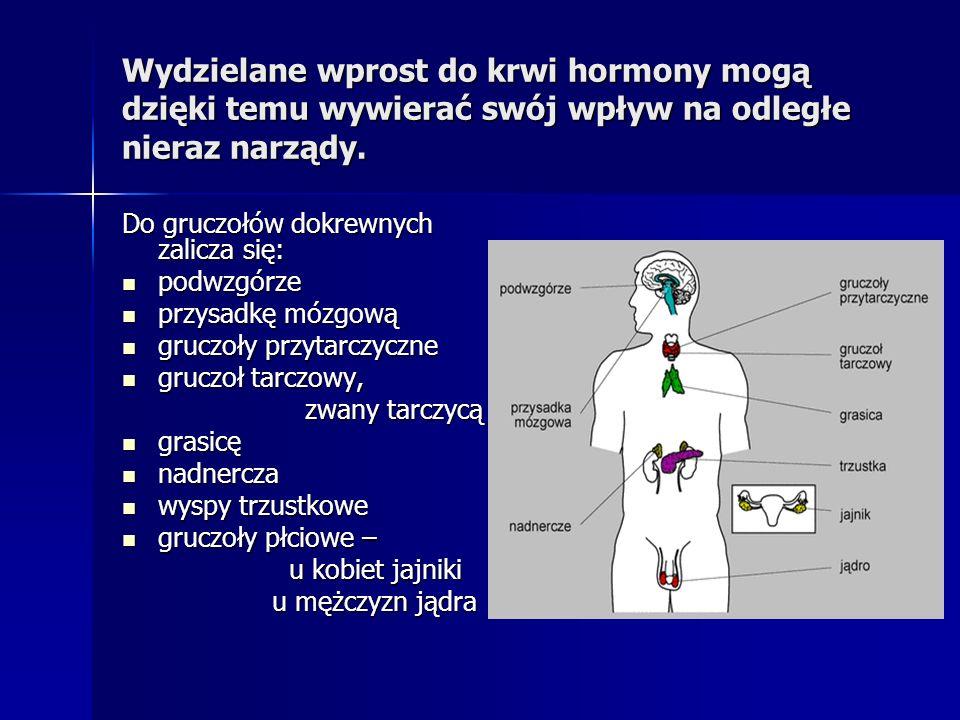 Wydzielane wprost do krwi hormony mogą dzięki temu wywierać swój wpływ na odległe nieraz narządy.