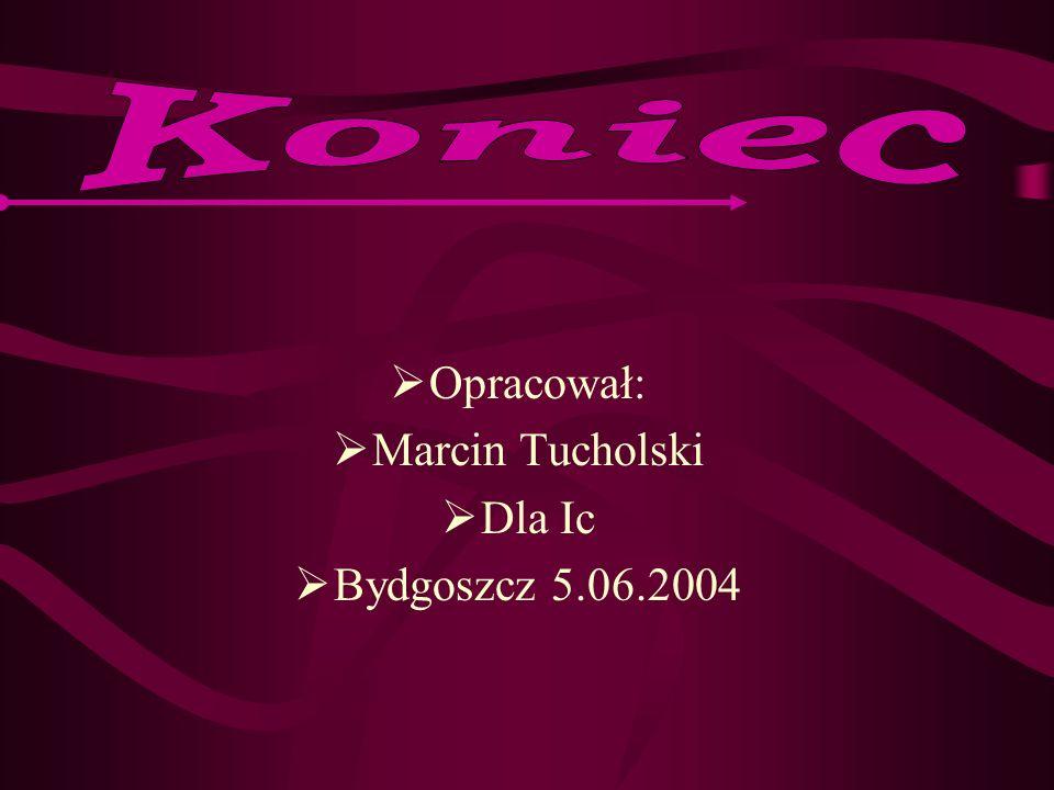 Koniec Opracował: Marcin Tucholski Dla Ic Bydgoszcz 5.06.2004