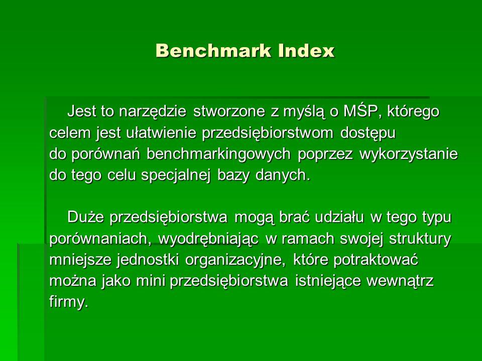Benchmark Index Jest to narzędzie stworzone z myślą o MŚP, którego