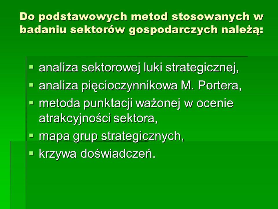 analiza sektorowej luki strategicznej,