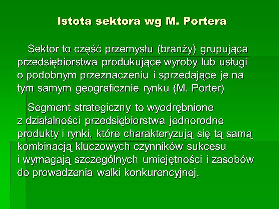 Istota sektora wg M. Portera