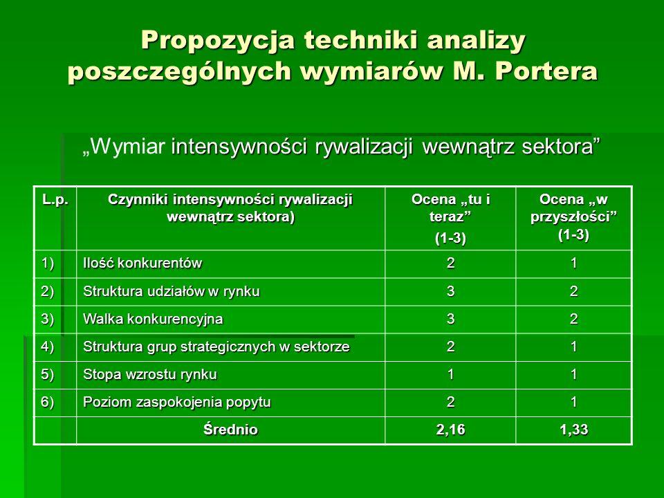 Propozycja techniki analizy poszczególnych wymiarów M. Portera