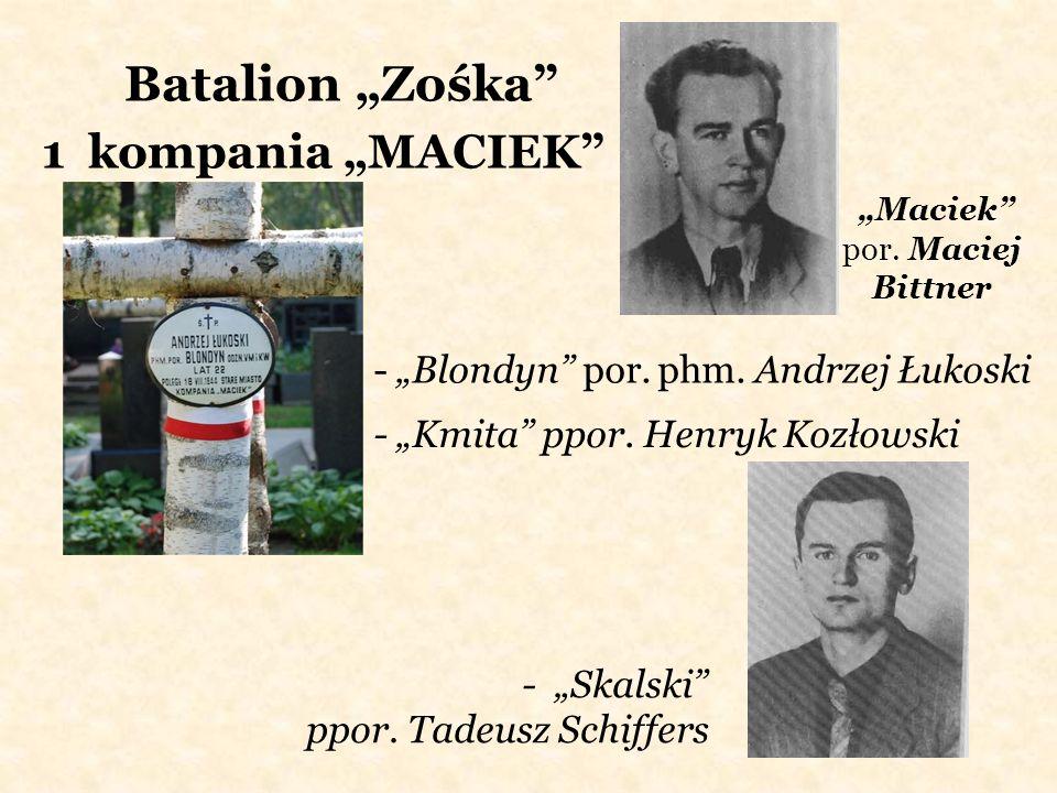 """""""Maciek por. Maciej Bittner"""