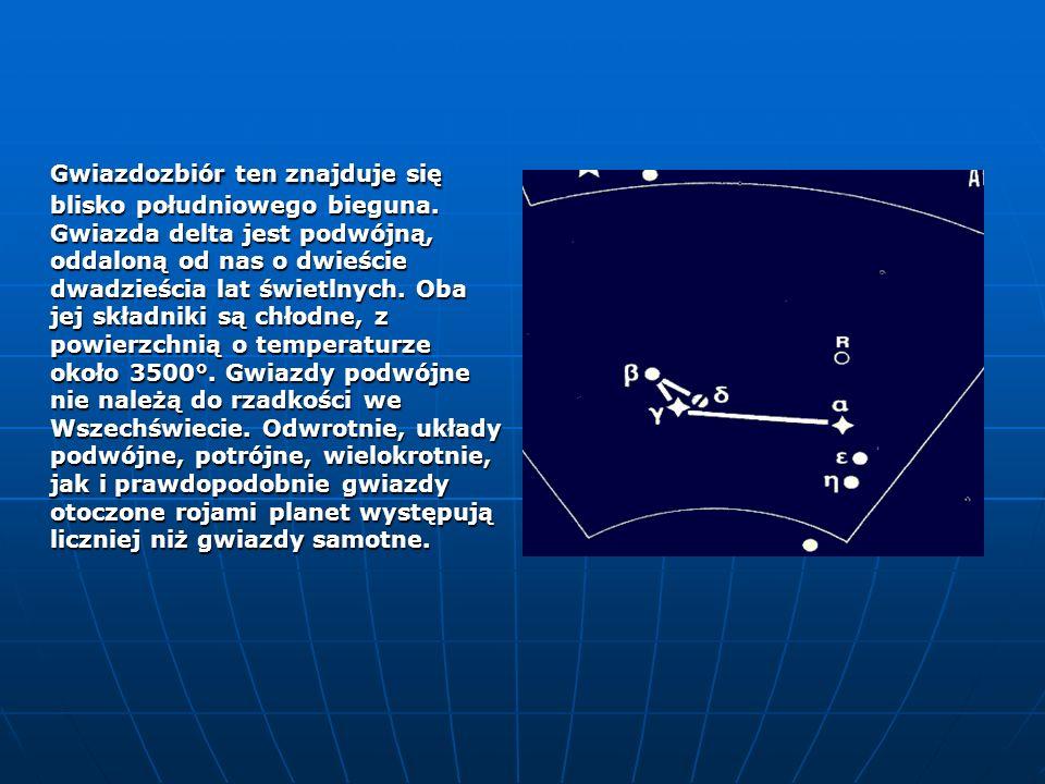 Gwiazdozbiór ten znajduje się blisko południowego bieguna