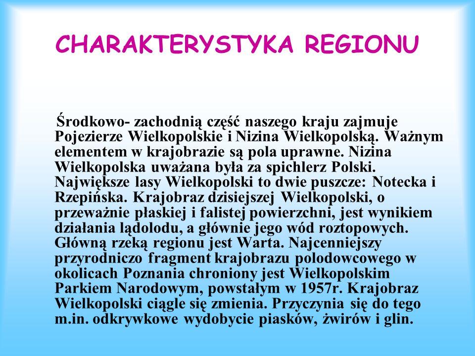 CHARAKTERYSTYKA REGIONU