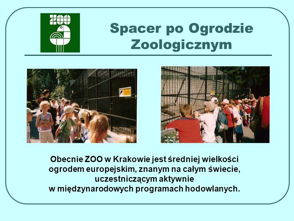 Spacer po Ogrodzie Zoologicznym