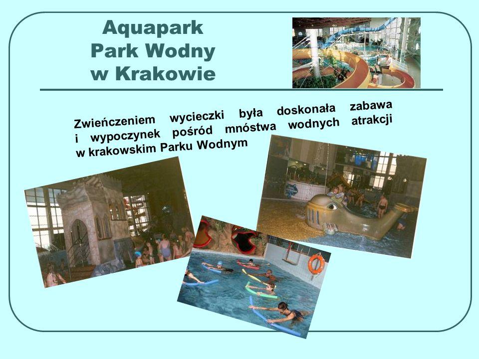 Aquapark Park Wodny w Krakowie