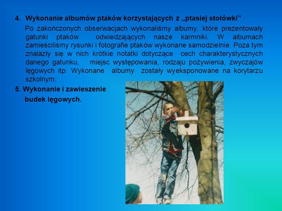 """Wykonanie albumów ptaków korzystających z """"ptasiej stołówki"""