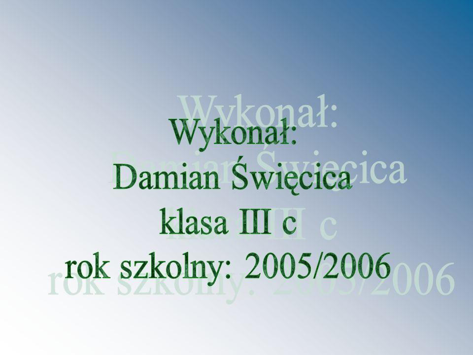 Wykonał: Damian Święcica klasa III c rok szkolny: 2005/2006