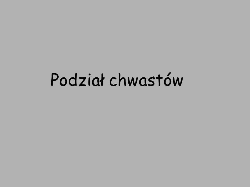 Podział chwastów