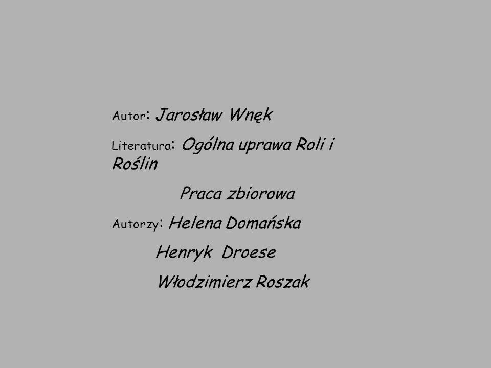 Praca zbiorowa Henryk Droese Włodzimierz Roszak Autor: Jarosław Wnęk