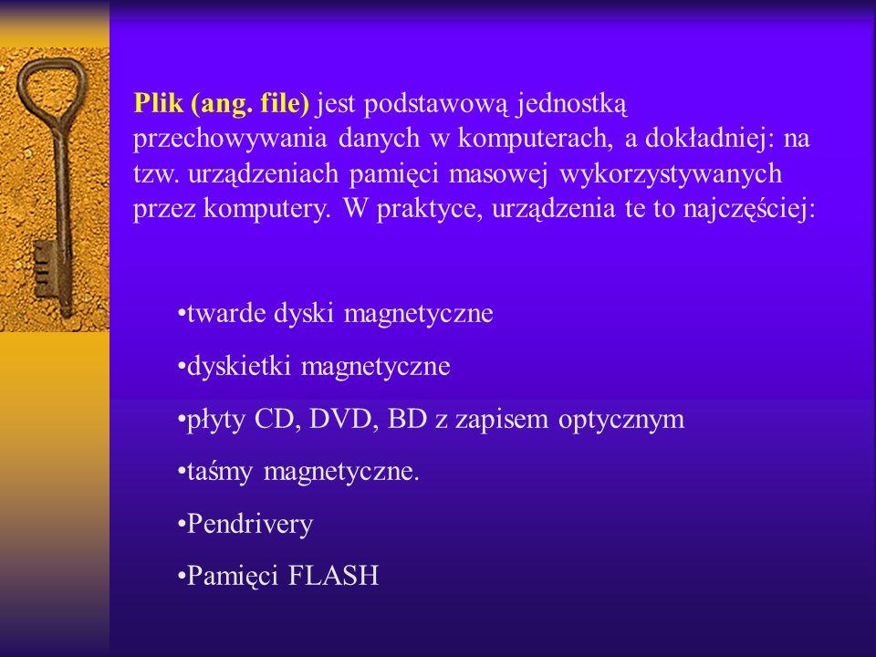 Plik (ang. file) jest podstawową jednostką przechowywania danych w komputerach, a dokładniej: na tzw. urządzeniach pamięci masowej wykorzystywanych przez komputery. W praktyce, urządzenia te to najczęściej: