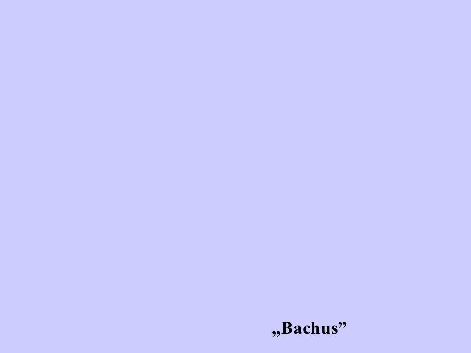 """""""Bachus"""