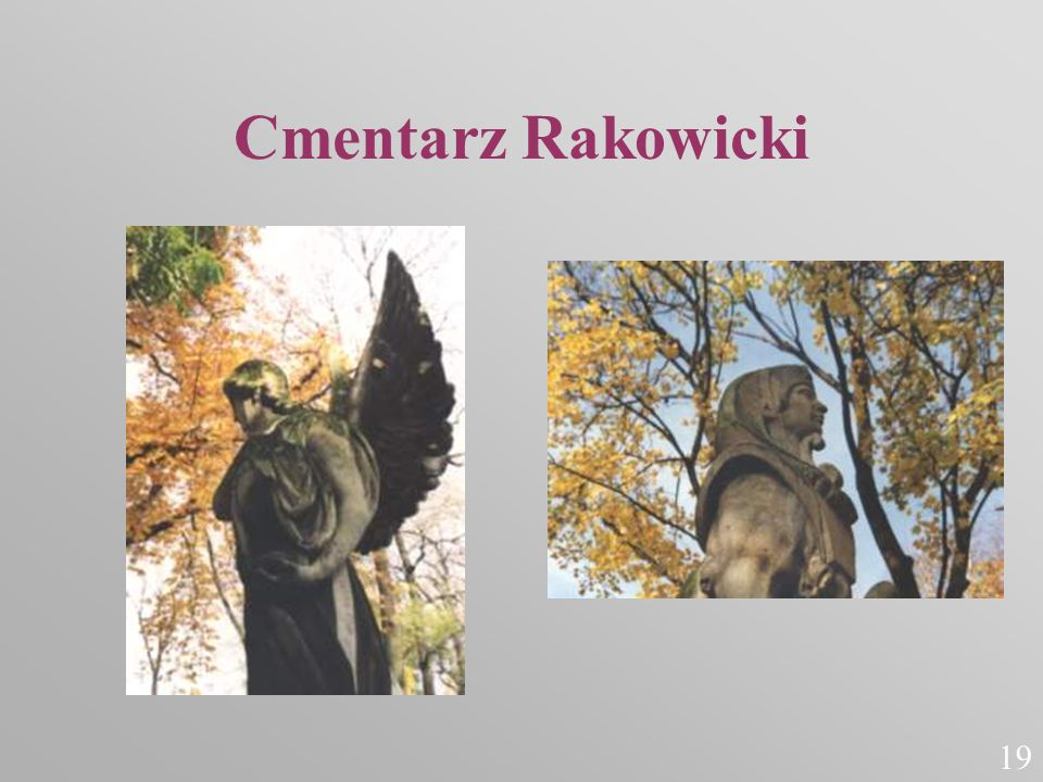 Cmentarz Rakowicki 19