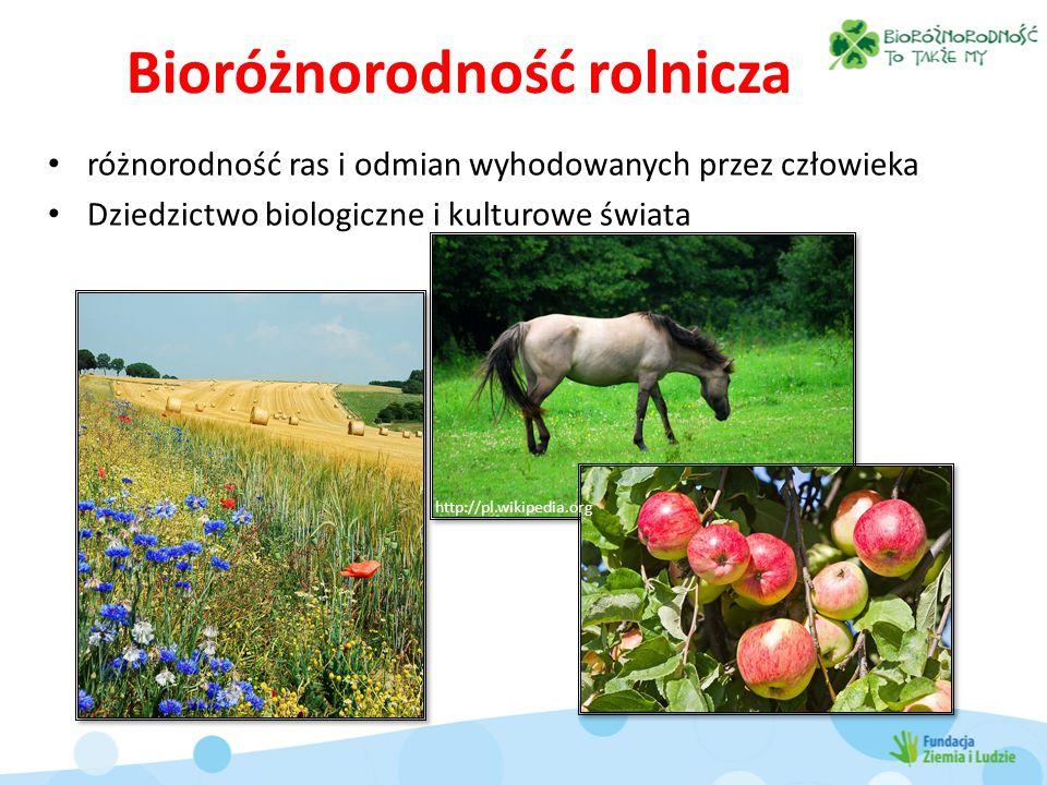 Bioróżnorodność rolnicza