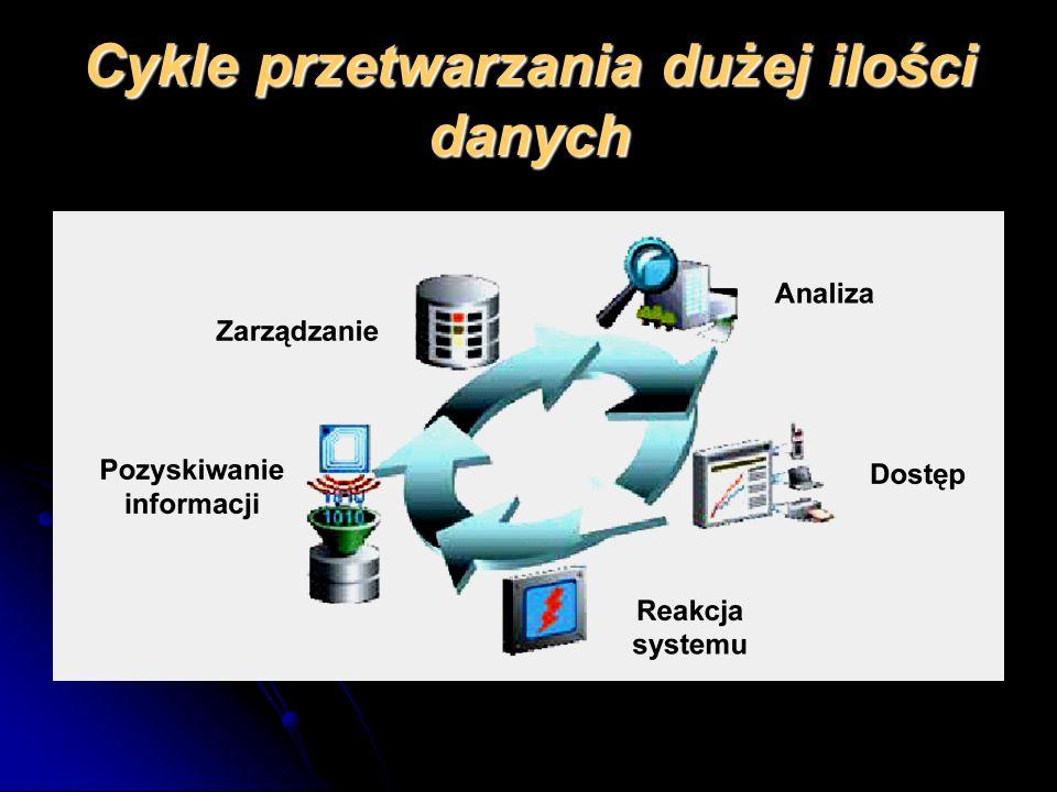 Cykle przetwarzania dużej ilości danych