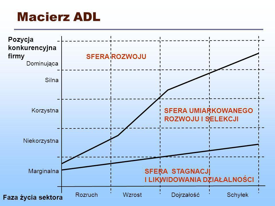 Macierz ADL Pozycja konkurencyjna firmy SFERA ROZWOJU
