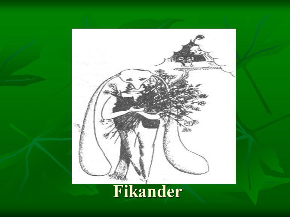 Fikander