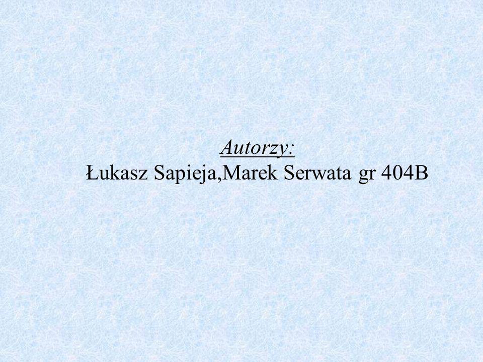 Autorzy: Łukasz Sapieja,Marek Serwata gr 404B