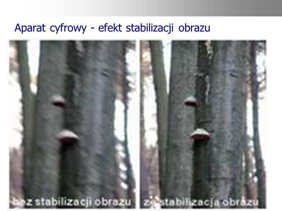 Aparat cyfrowy - efekt stabilizacji obrazu