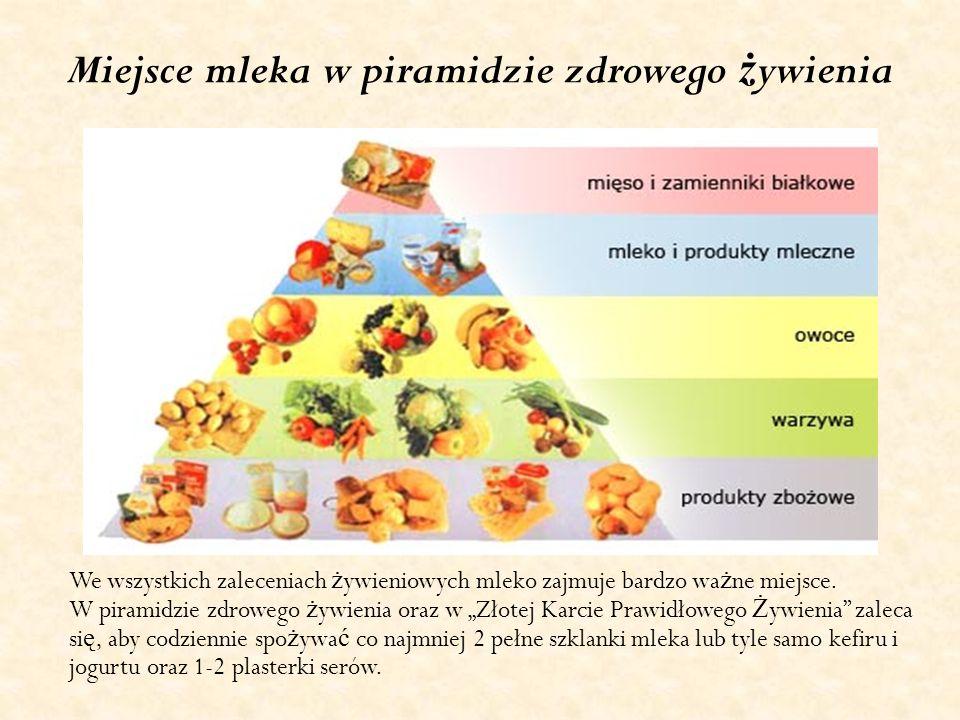 Miejsce mleka w piramidzie zdrowego żywienia