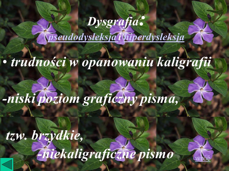 Dysgrafia: pseudodysleksja i hiperdysleksja