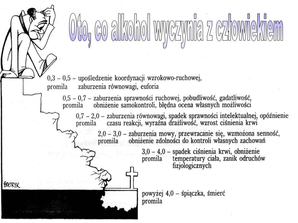 Oto, co alkohol wyczynia z człowiekiem