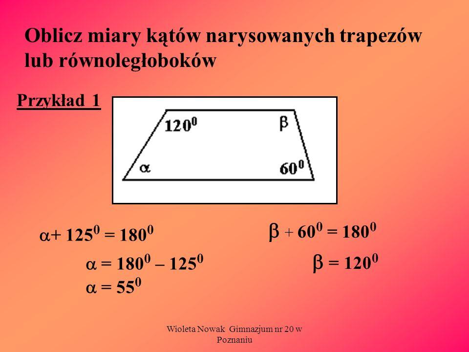 Wioleta Nowak Gimnazjum nr 20 w Poznaniu