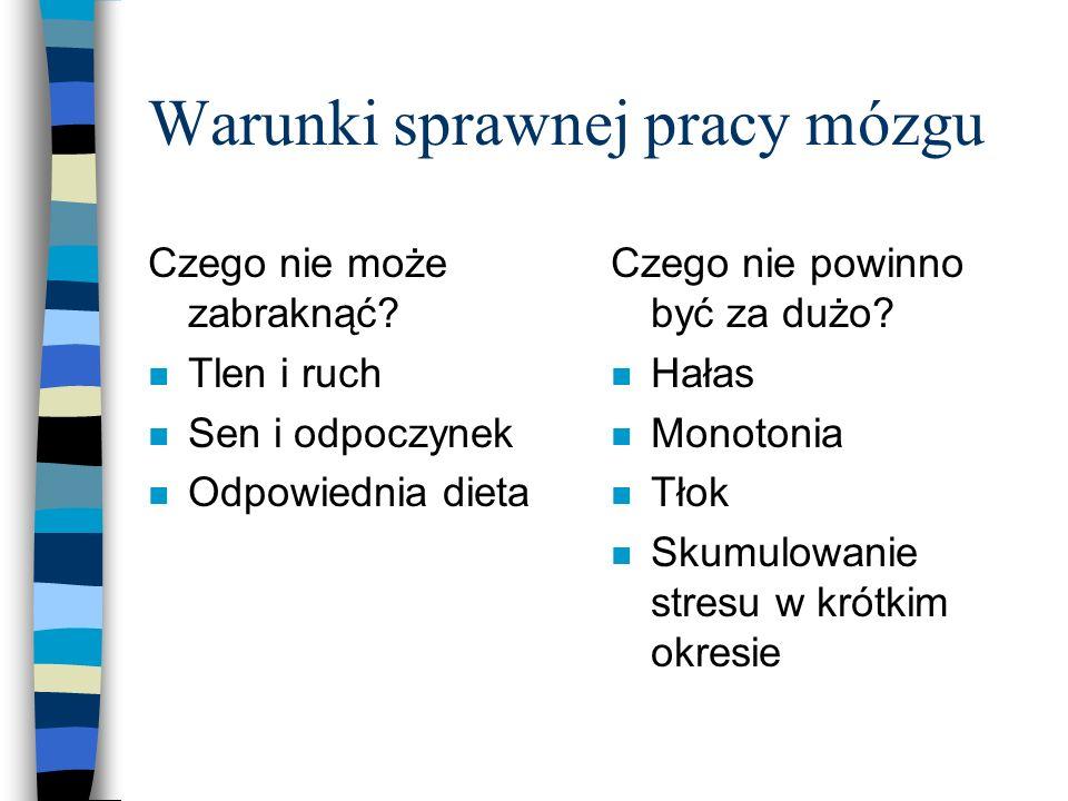 Warunki sprawnej pracy mózgu