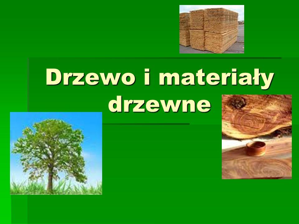 Drzewo i materiały drzewne