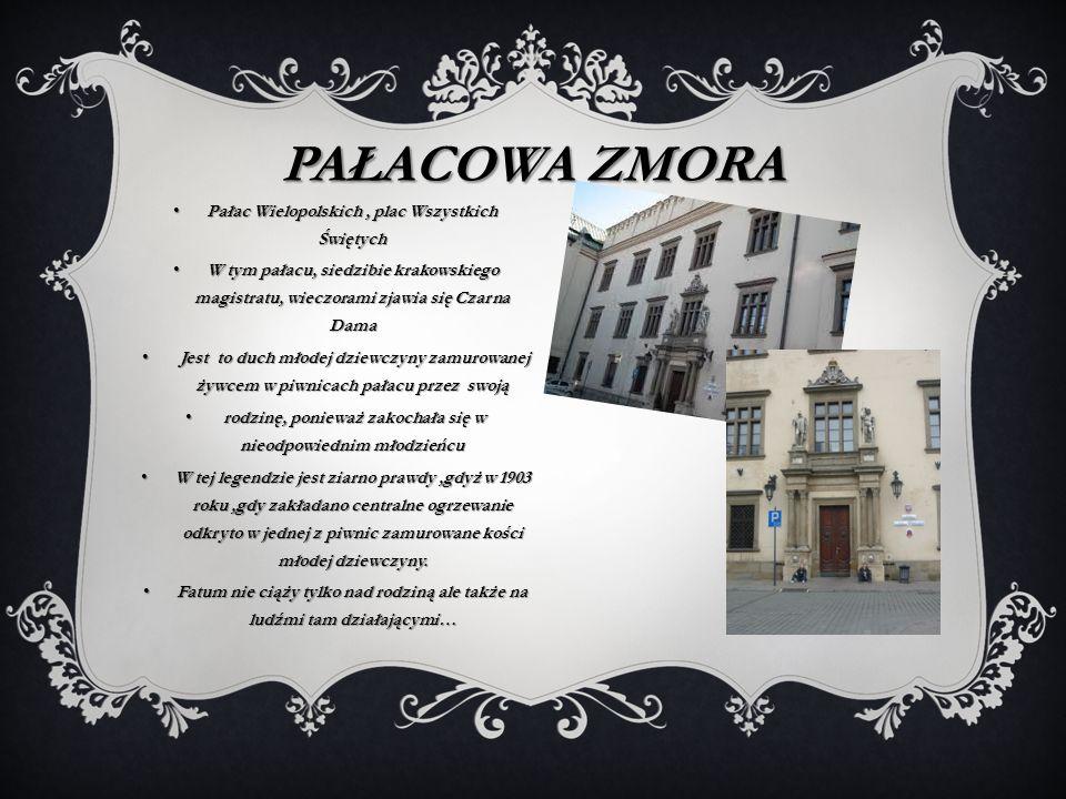 Pałacowa zmora Pałac Wielopolskich , plac Wszystkich Świętych