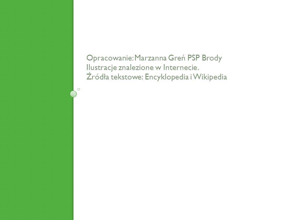 Opracowanie: Marzanna Greń PSP Brody