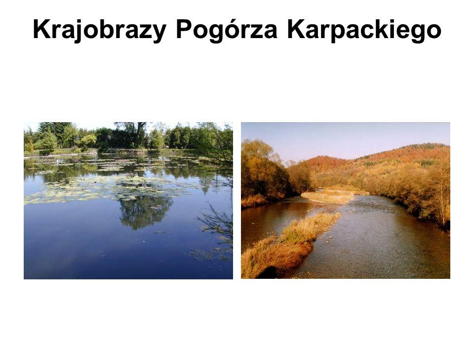Krajobrazy Pogórza Karpackiego