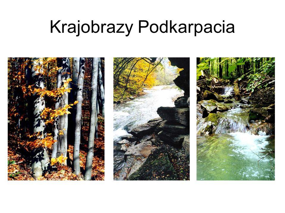 Krajobrazy Podkarpacia