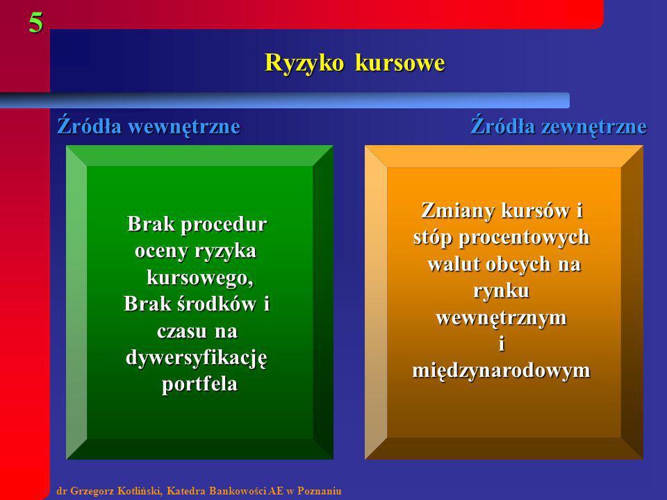 Ryzyko kursowe Źródła wewnętrzne Źródła zewnętrzne Brak procedur