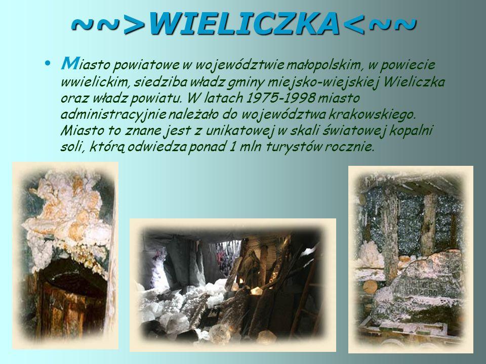 ~~>WIELICZKA<~~