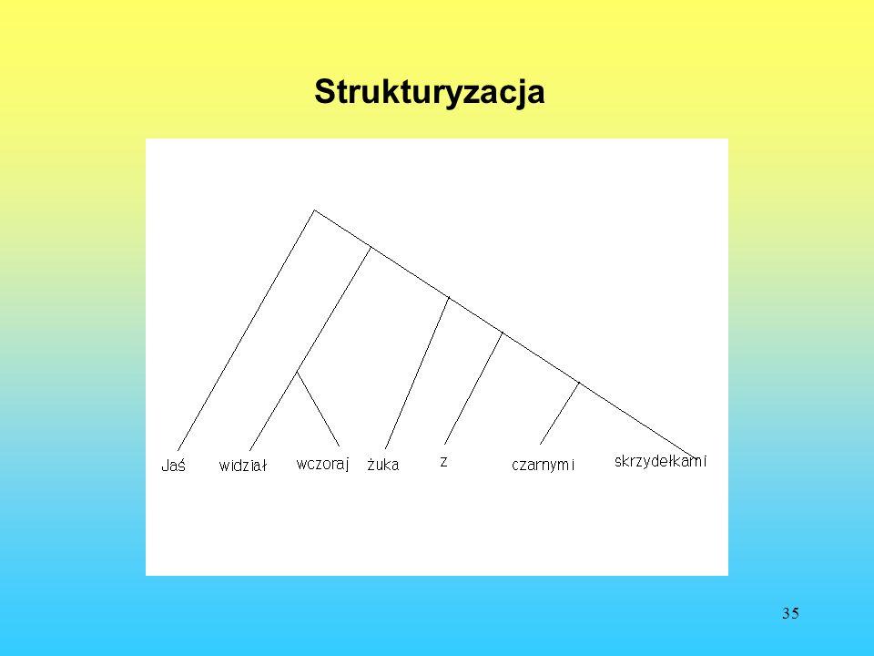 Strukturyzacja