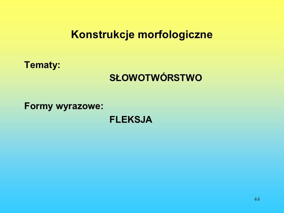 Konstrukcje morfologiczne