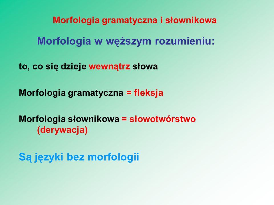 Morfologia gramatyczna i słownikowa