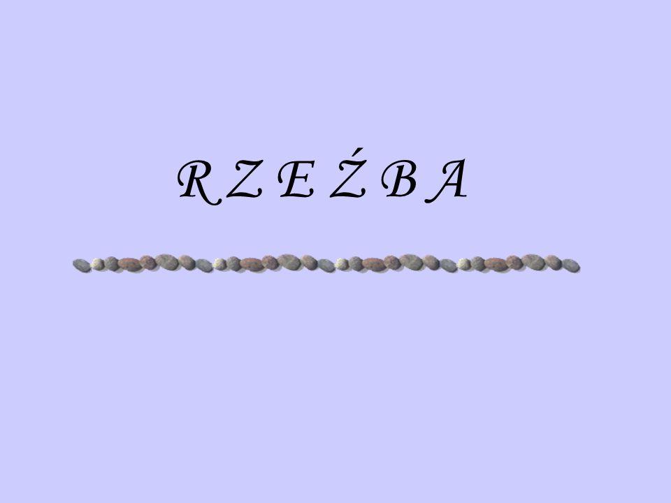 R Z E Ź B A