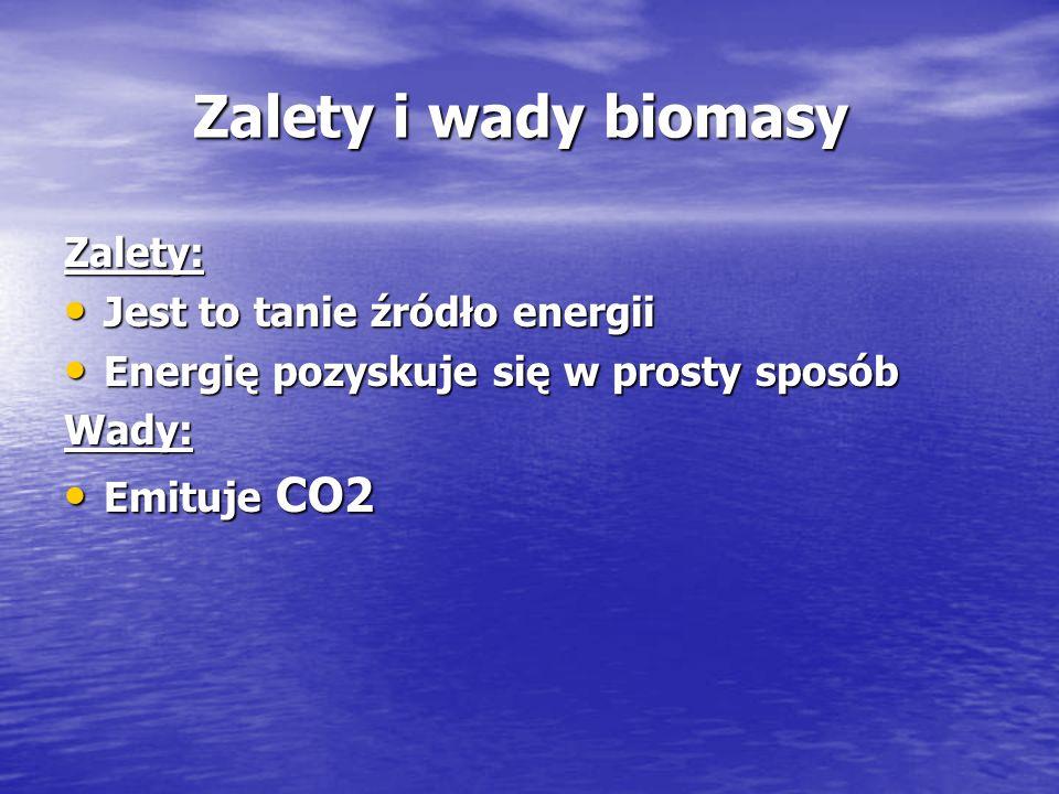 Zalety i wady biomasy Zalety: Jest to tanie źródło energii