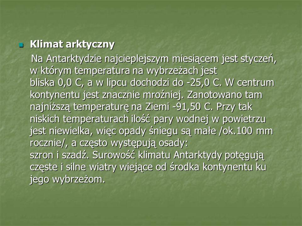 Klimat arktyczny