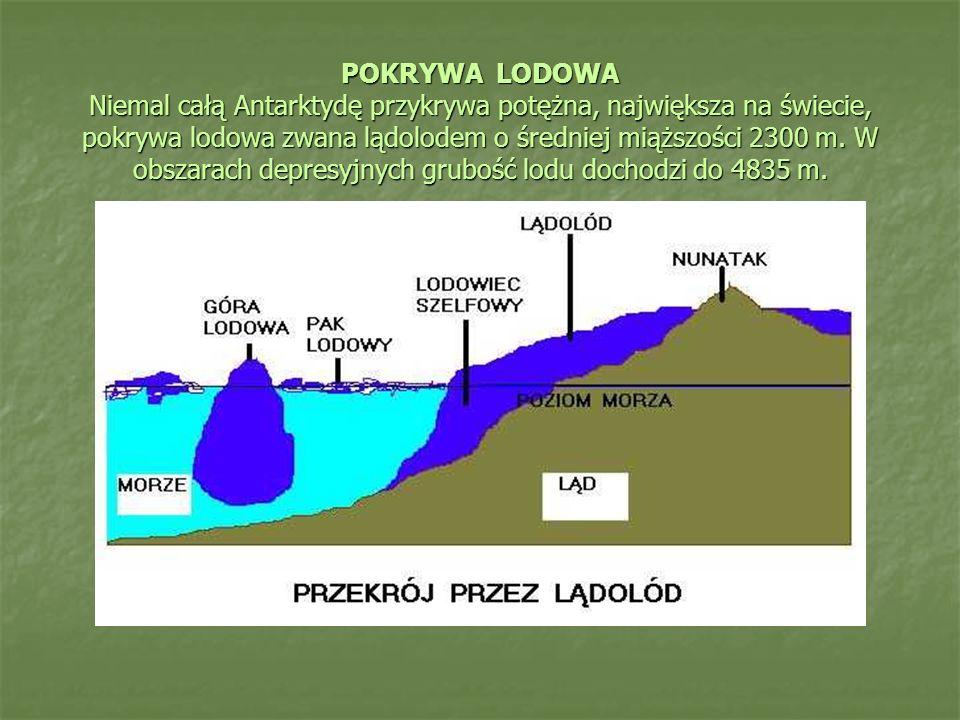 POKRYWA LODOWA Niemal całą Antarktydę przykrywa potężna, największa na świecie, pokrywa lodowa zwana lądolodem o średniej miąższości 2300 m.