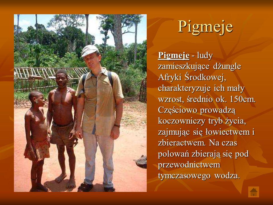 Pigmeje