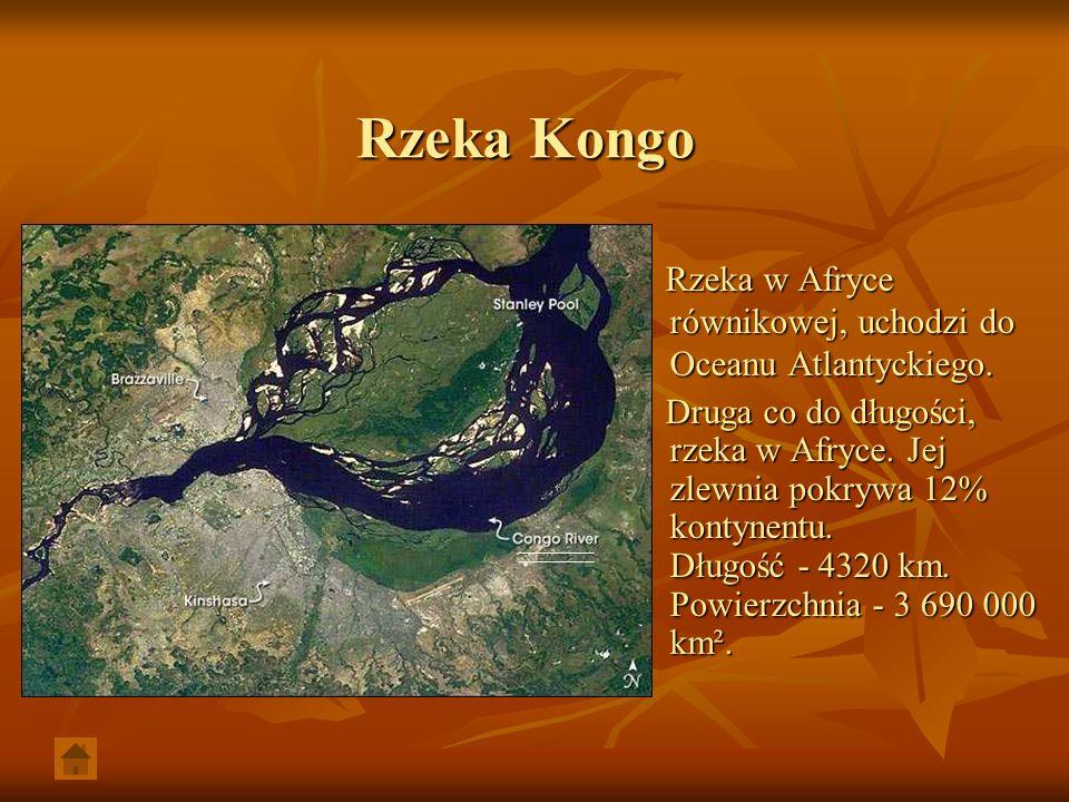 Rzeka Kongo Rzeka w Afryce równikowej, uchodzi do Oceanu Atlantyckiego.