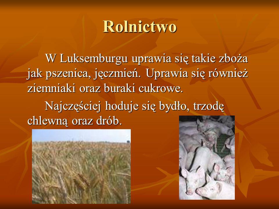 RolnictwoW Luksemburgu uprawia się takie zboża jak pszenica, jęczmień. Uprawia się również ziemniaki oraz buraki cukrowe.